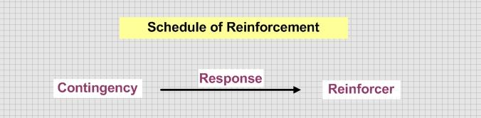 This images describes the basic components of a reard schedule and how they relate to each other.
