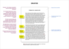 Sinopsis, senaryonun bütün çeyreklerinin iki paragraf içinde toplanarak bir sayfayı geçmeyecek şekilde anlatıldığı bir olaylar özetidir.
